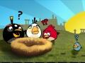 скриншот Грозные пташки